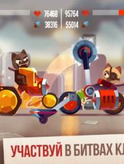 CATS Crash Arena 05