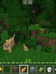 Minecraft Pocket Edition 01