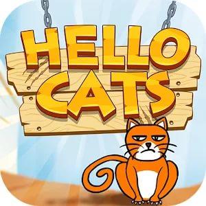 Hello Cats