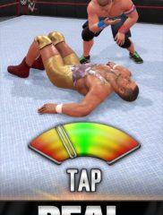 WWE Universe 02