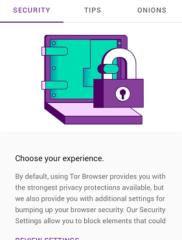 Tor Browser 04