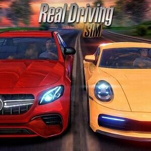 Real-Driving-Sim