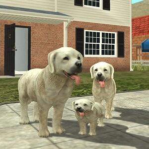 Симулятор-Собаки-Онлайн